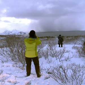 Islande hiver thingvellir
